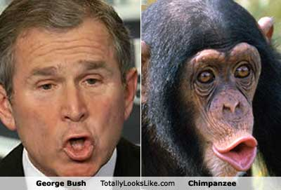 George_W_Bush_Monkey